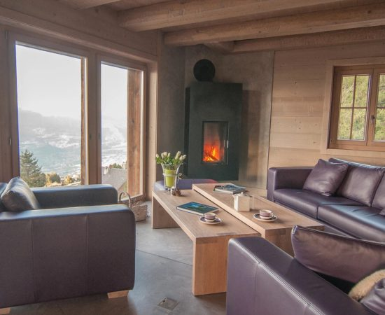 Salon et cheminée au feu de bois