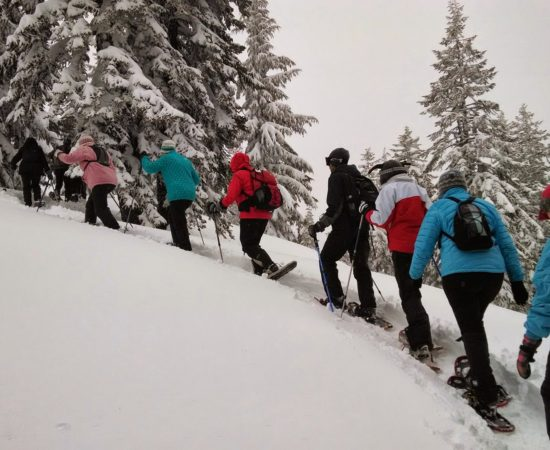Snowshoe in Nendaz - Chalet Altitude 1600